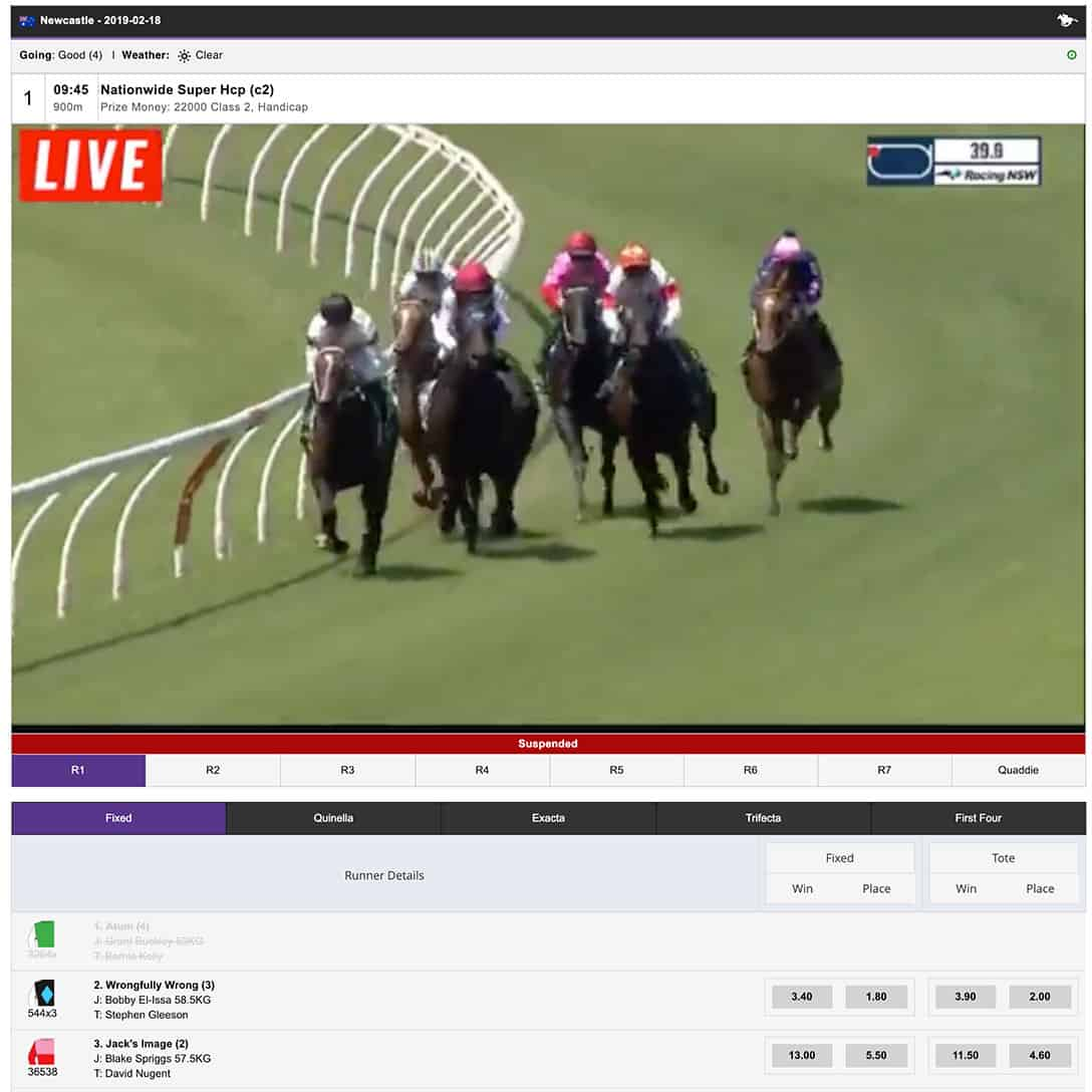 Horse Racing Crypto Betting Guide - BitEdge: Helping You Win